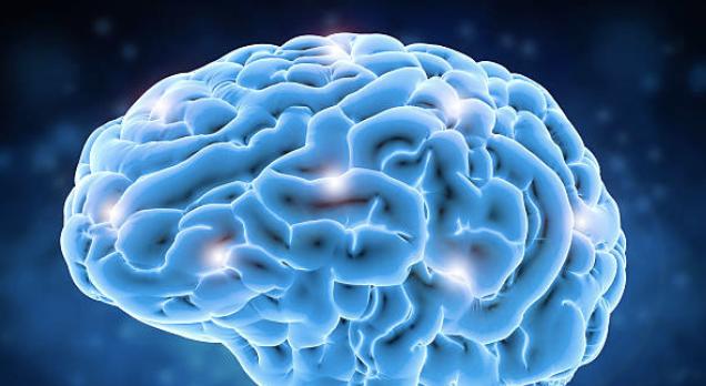 4 habitudes nuisibles à votre cerveaux