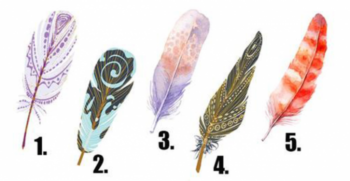 Test: découvrez vos désirs les plus cachés à travers la plume que vous choisissez