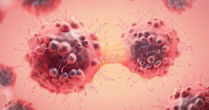Des scientifiques ont annoncé un «traitement complet» contre le cancer: