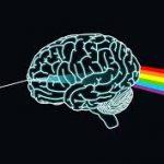 Comment câbler votre cerveau pour la positivité
