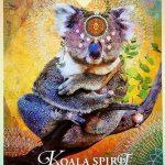 KOALA CET ANIMAL SPIRITUEL – LA DÉTENTE EST ESSENTIELLE