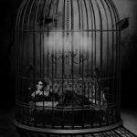 Les cages dans lesquelles nous vivons et ce que cela signifie d'être libre