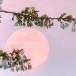 quels sont ses effets sur la pleine lune en Vierge le 27 février ?