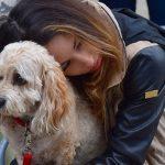 Il peut être aussi difficile de perdre un chien que de quitter un être cher.